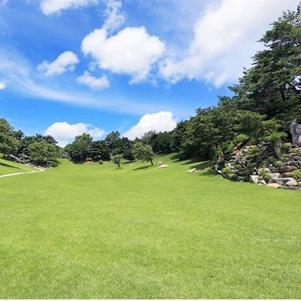 Wolmyeongdong lawn sanctuary in the summer