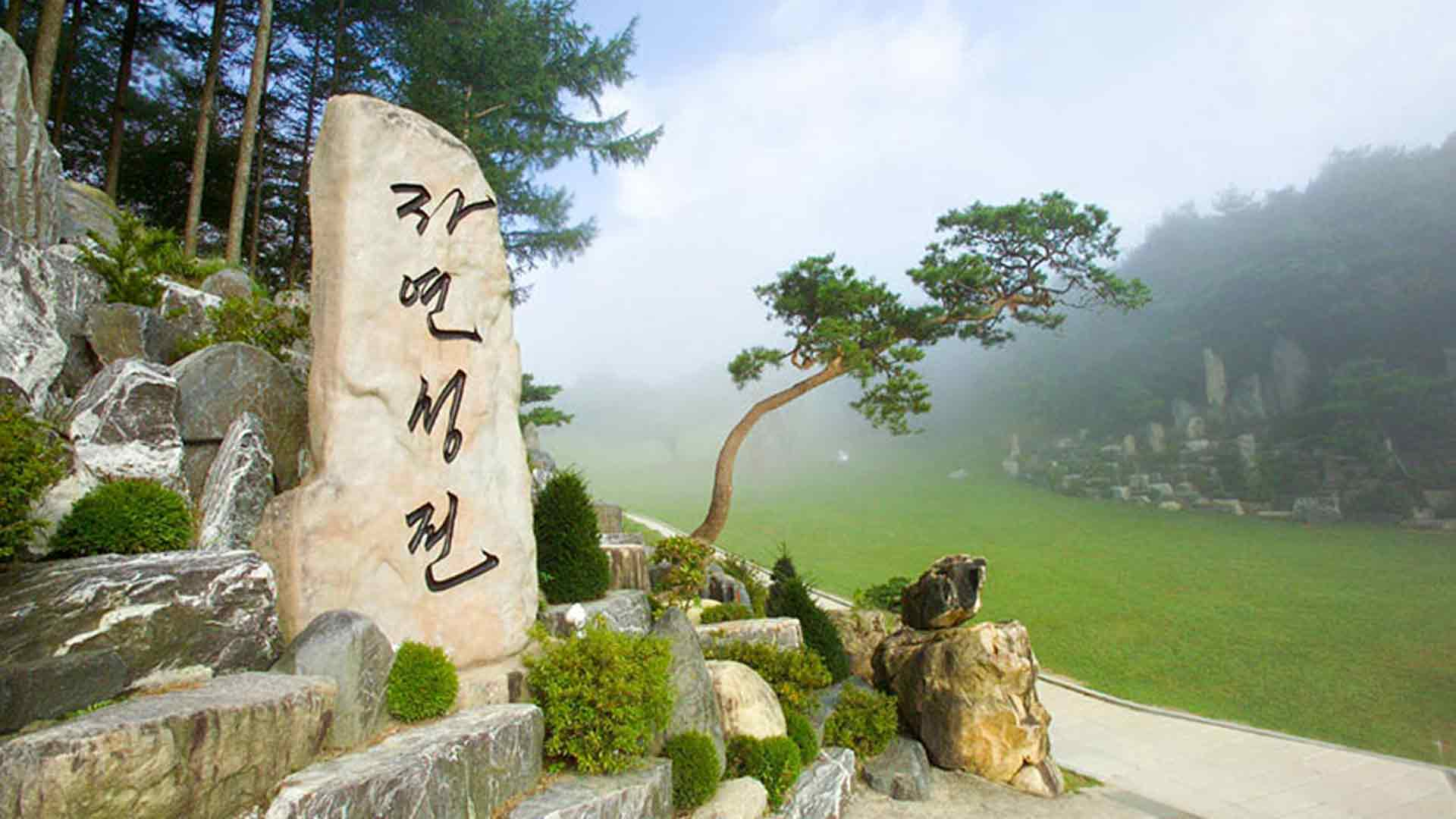 The Natural Temple Signboard Rock is a boulder in Wolmyeongdong with the words, Natural Temple engraved on it