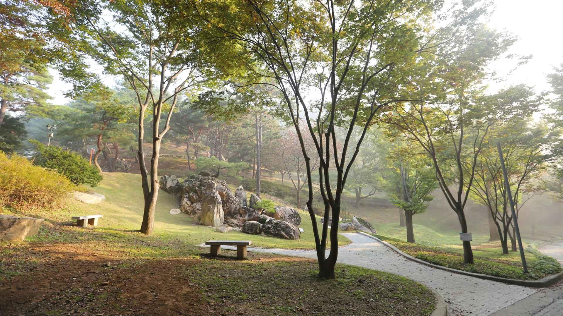 Wolmyeongdong-Autumn-1