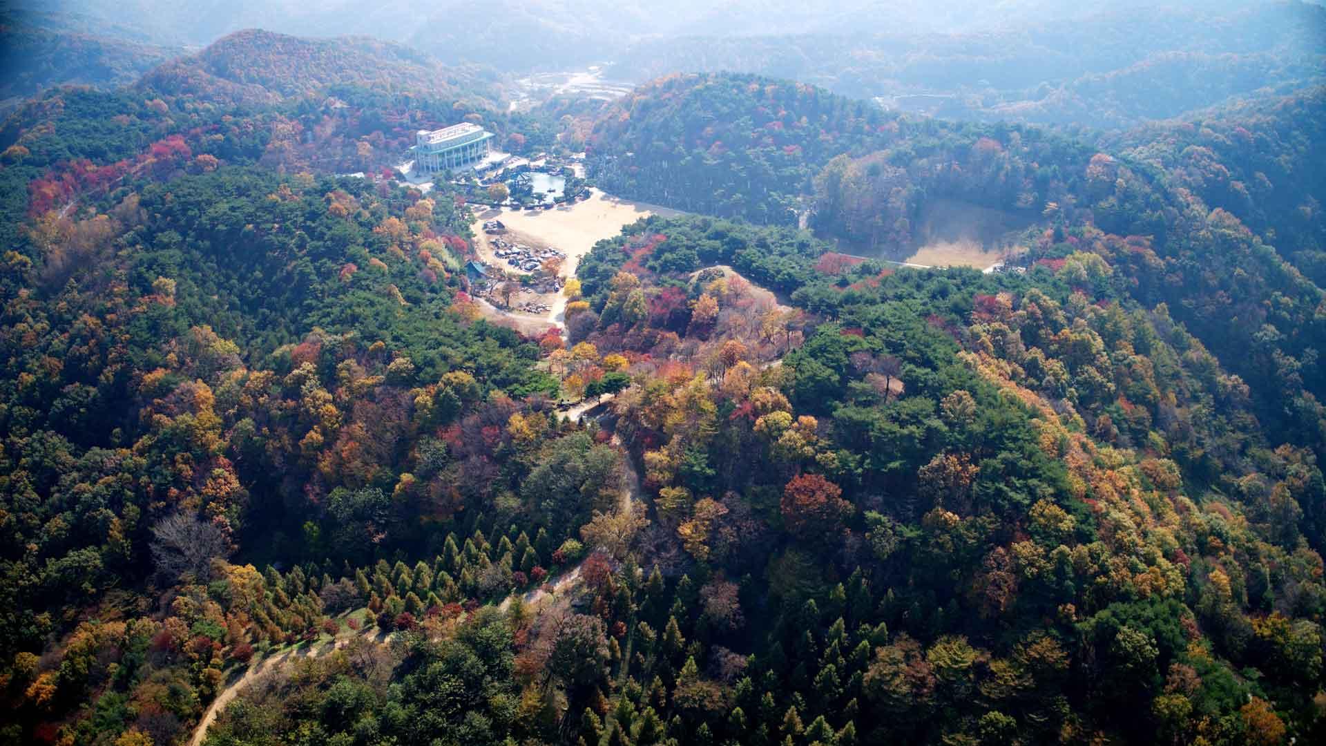 Wolmyeongdong-Autumn-8